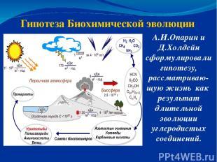 Гипотеза Биохимической эволюции А.И.Опарин и Д.Холдейн сформулировали гипотезу,