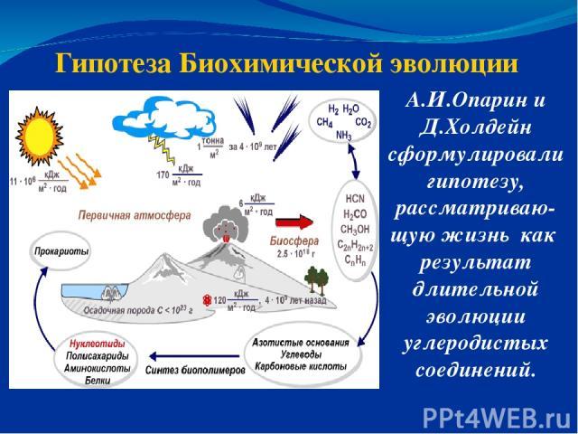 Гипотеза Биохимической эволюции А.И.Опарин и Д.Холдейн сформулировали гипотезу, рассматриваю-щую жизнь как результат длительной эволюции углеродистых соединений.