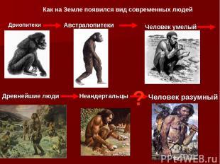 Дриопитеки Австралопитеки Человек умелый Древнейшие люди Неандертальцы Человек р