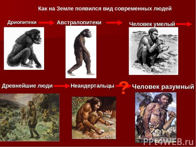 Дриопитеки Австралопитеки Человек умелый Древнейшие люди Неандертальцы Человек разумный Как на Земле появился вид современных людей ?