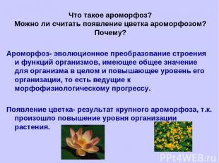 Что такое ароморфоз? Можно ли считать появление цветка ароморфозом? Почему? Аром