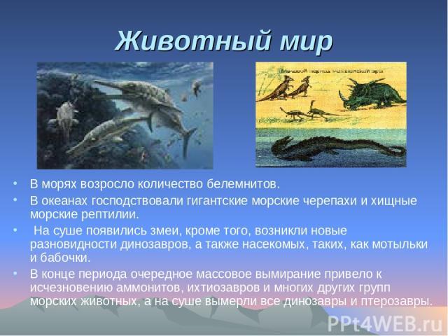 Животный мир В морях возросло количество белемнитов. В океанах господствовали гигантские морские черепахи и хищные морские рептилии. На суше появились змеи, кроме того, возникли новые разновидности динозавров, а также насекомых, таких, как мотыльки …