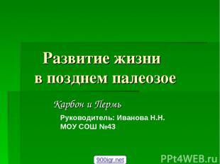 Развитие жизни в позднем палеозое Карбон и Пермь Руководитель: Иванова Н.Н. МОУ