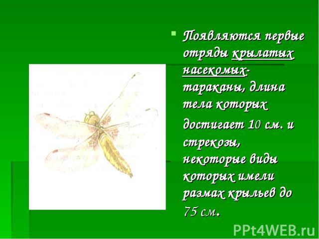 Появляются первые отряды крылатых насекомых- тараканы, длина тела которых достигает 10 см. и стрекозы, некоторые виды которых имели размах крыльев до 75 см.