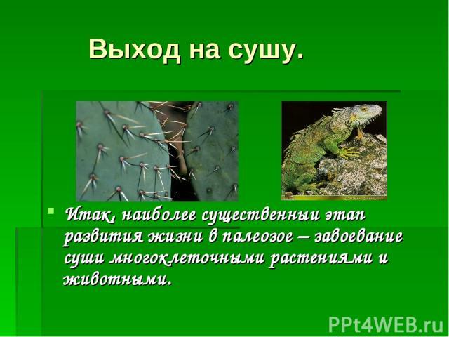 Выход на сушу. Итак, наиболее существенныи этап развития жизни в палеозое – завоевание суши многоклеточными растениями и животными.