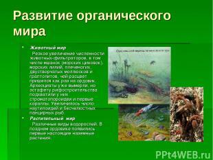 Животный мир Резкое увеличение численности животных-фильтраторов, в том числе мш