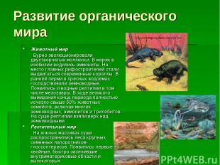 Развитие органического мира Животный мир Бурно эволюционировали двустворчатые мо