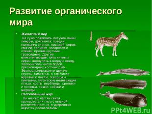Развитие органического мира Животный мир На суше появились летучие мыши, лемуры,
