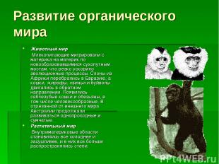 Развитие органического мира Животный мир Млекопитающие мигрировали с материка на
