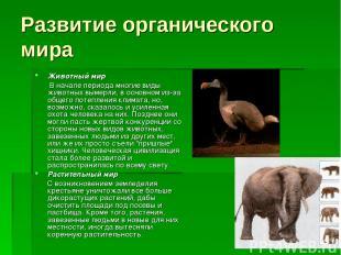 Развитие органического мира Животный мир В начале периода многие виды животных в