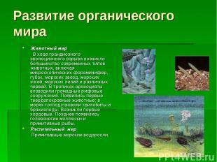 Развитие органического мира Животный мир В ходе грандиозного эволюционного взрыв
