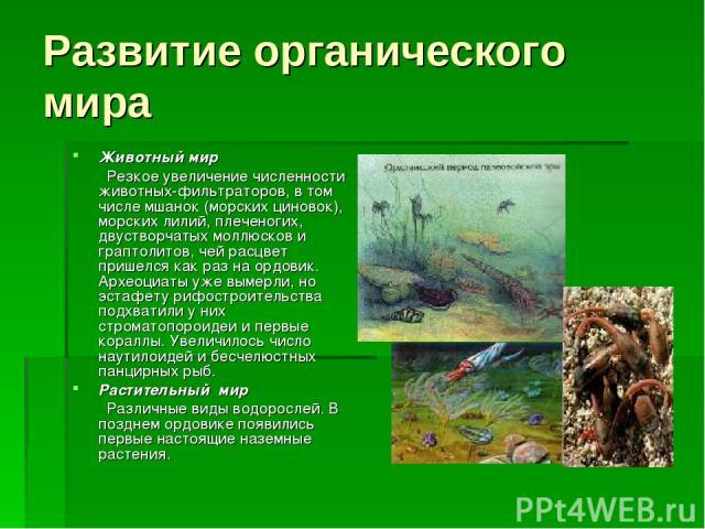 Животный мир Резкое увеличение численности животных-фильтраторов, в том числе мшанок (морских циновок), морских лилий, плеченогих, двустворчатых моллюсков и граптолитов, чей расцвет пришелся как раз на ордовик. Археоциаты уже вымерли, но эстафету ри…
