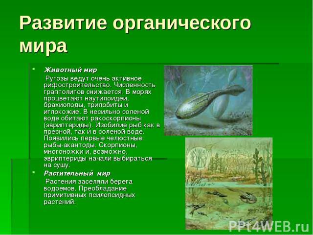 Развитие органического мира Животный мир Ругозы ведут очень активное рифостроительство. Численность граптолитов снижается. В морях процветают наутилоидеи, брахиоподы, трилобиты и иглокожие. В несильно соленой воде обитают ракоскорпионы (эвриптериды)…