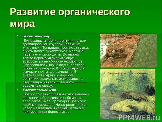 Развитие органического мира Животный мир  Динозавры и прочие рептилии стали доминирующей группой наземных животных. Появились первые лягушки, а чуть позже сухопутные и морские черепахи и крокодилы. Возникли также первые млекопитающие, возросло р…