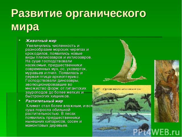 Развитие органического мира Животный мир Увеличились численность и разнообразие морских черепах и крокодилов, появились новые виды плезиозавров и ихтиозавров. На суше господствовали насекомые, предшественники современных мух, ос, уховерток, муравьев…