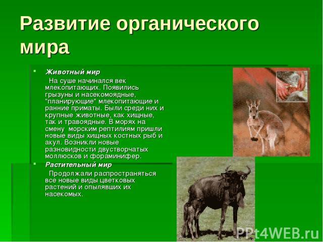 Развитие органического мира Животный мир На суше начинался век млекопитающих. Появились грызуны и насекомоядные,