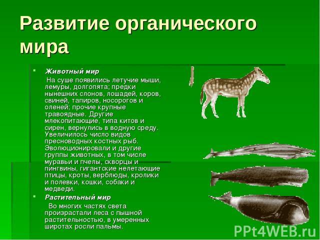Развитие органического мира Животный мир На суше появились летучие мыши, лемуры, долгопята; предки нынешних слонов, лошадей, коров, свиней, тапиров, носорогов и оленей; прочие крупные травоядные. Другие млекопитающие, типа китов и сирен, вернулись в…