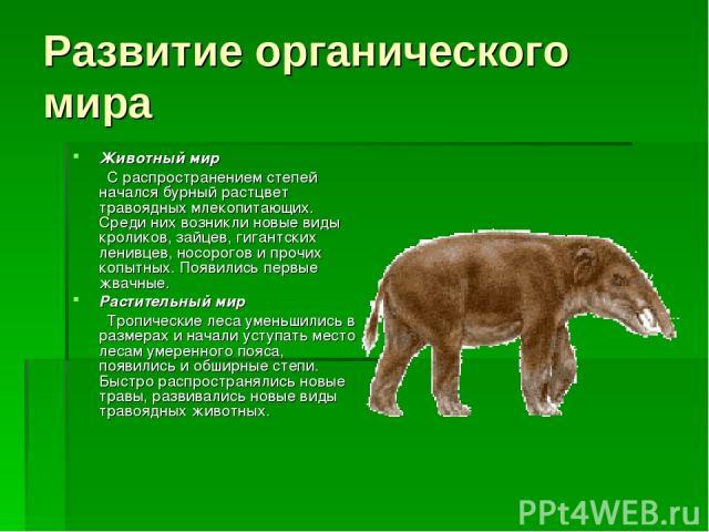 Развитие органического мира Животный мир С распространением степей начался бурный растцвет травоядных млекопитающих. Среди них возникли новые виды кроликов, зайцев, гигантских ленивцев, носорогов и прочих копытных. Появились первые жвачные. Растител…