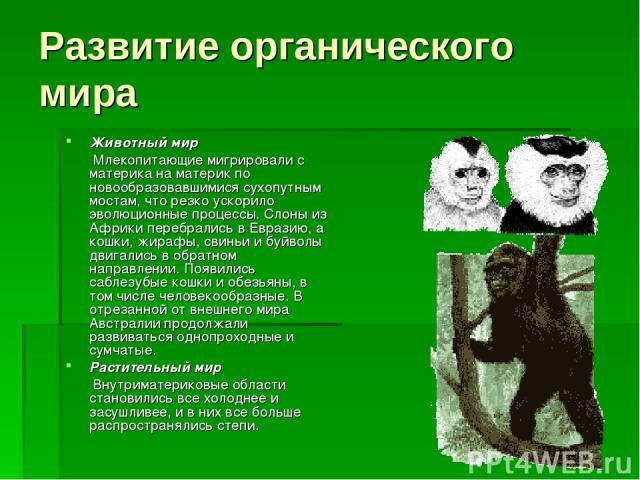 Развитие органического мира Животный мир Млекопитающие мигрировали с материка на материк по новообразовавшимися сухопутным мостам, что резко ускорило эволюционные процессы. Слоны из Африки перебрались в Евразию, а кошки, жирафы, свиньи и буйволы дви…
