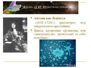 Антони ван Левенгук (1632–1723г.) рассмотрел под микроскопом простейших Вывод: к