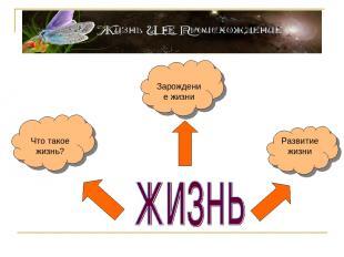 Что такое жизнь? Зарождение жизни Развитие жизни