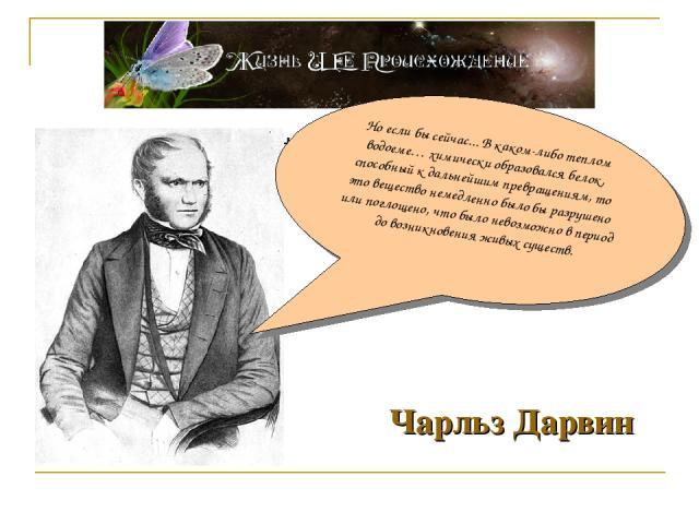Чарльз Дарвин Чарльз Дарвин Но если бы сейчас... В каком-либо теплом водоеме… химически образовался белок, способный к дальнейшим превращениям, то это вещество немедленно было бы разрушено или поглощено, что было невозможно в период до возникновения…