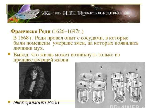 Франческо Реди (1626–1697г.) В 1668 г. Реди провел опыт с сосудами, в которые были помещены умершие змеи, на которых появились личинки мух. Вывод: что жизнь может возникнуть только из предшествующей жизни. Эксперимент Реди