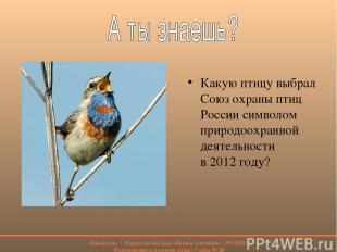 Какую птицу выбрал Союз охраны птиц России символом природоохранной деятельности