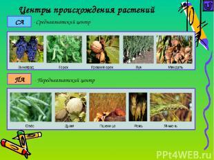 Достижения селекции растений Селекционер Примеры работ по гибридизации Мичурин И