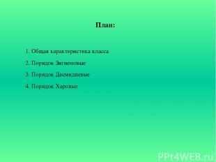 План: 1. Общая характеристика класса 2. Порядок Зигнемовые 3. Порядок Десмидиевы