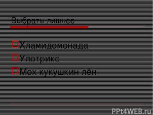 Выбрать лишнее Хламидомонада Улотрикс Мох кукушкин лён
