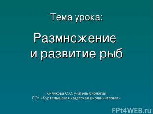 Тема урока: Размножение и развитие рыб Килякова О.С. учитель биологии ГОУ «Курта