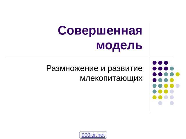 Совершенная модель Размножение и развитие млекопитающих 900igr.net
