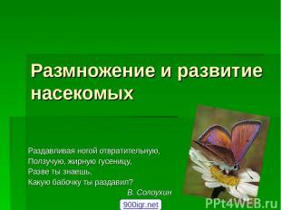 Размножение и развитие насекомых Раздавливая ногой отвратительную, Ползучую, жир