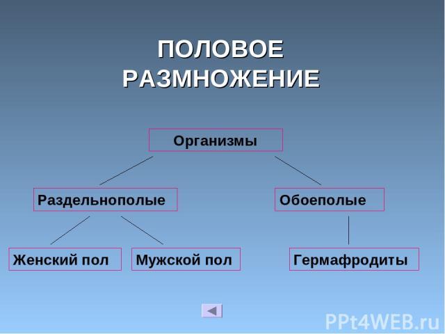 ПОЛОВОЕ РАЗМНОЖЕНИЕ Организмы Раздельнополые Обоеполые Женский пол Мужской пол Гермафродиты