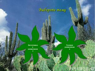 Выберете тему Вегетативное размножение Половое размножение