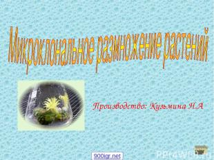 Производство: Кузьмина Н.А далее 900igr.net