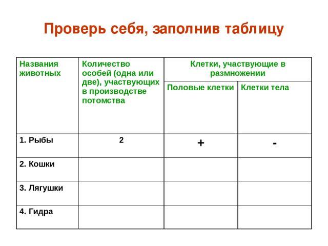 Проверь себя, заполнив таблицу Названия животных Количество особей (одна или две), участвующих в производстве потомства Клетки, участвующие в размножении Половые клетки Клетки тела 1. Рыбы 2 + - 2. Кошки 3. Лягушки 4. Гидра