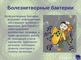 Болезнетворные бактерии Болезнетворные бактерии вызывают инфекционные заболевани