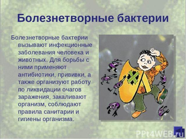 Болезнетворные бактерии Болезнетворные бактерии вызывают инфекционные заболевания человека и животных. Для борьбы с ними применяют антибиотики, прививки, а также организуют работу по ликвидации очагов заражения, закаливают организм, соблюдают правил…