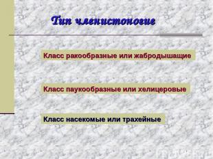 Тип членистоногие Класс ракообразные или жабродышащие Класс паукообразные или хе