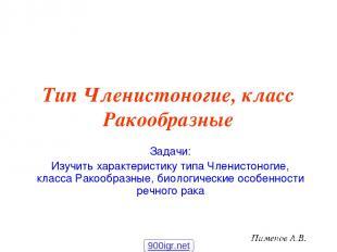 Тип Членистоногие, класс Ракообразные Задачи: Изучить характеристику типа Членис
