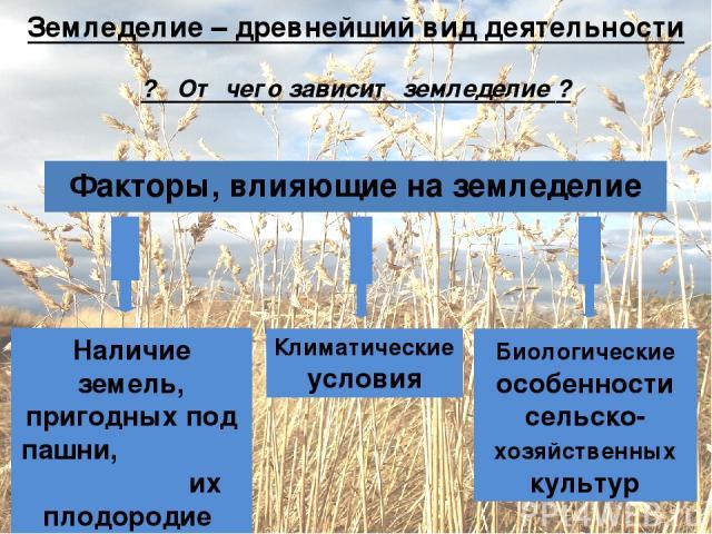 Земледелие – древнейший вид деятельности ? От чего зависит земледелие ? Факторы, влияющие на земледелие Наличие земель, пригодных под пашни, их плодородие Климатические условия Биологические особенности сельско-хозяйственных культур