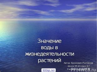 Значение воды в жизнедеятельности растений Автор: Ерохнович Ростислав Школа № 42