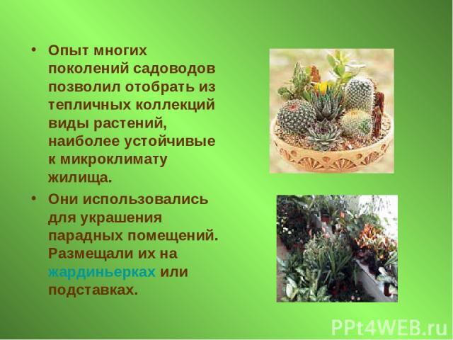 Опыт многих поколений садоводов позволил отобрать из тепличных коллекций виды растений, наиболее устойчивые к микроклимату жилища. Они использовались для украшения парадных помещений. Размещали их на жардиньерках или подставках.