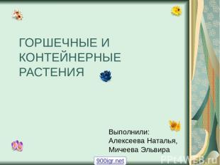 ГОРШЕЧНЫЕ И КОНТЕЙНЕРНЫЕ РАСТЕНИЯ Выполнили: Алексеева Наталья, Мичеева Эльвира