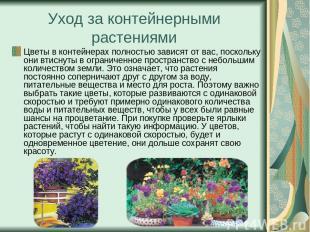Уход за контейнерными растениями Цветы в контейнерах полностью зависят от вас, п
