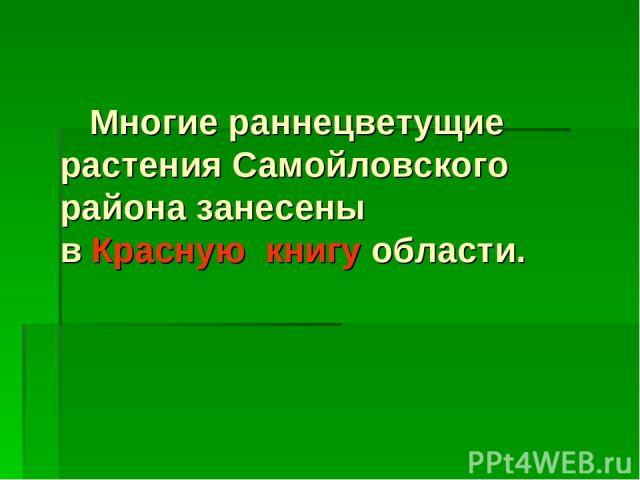 Многие раннецветущие растения Самойловского района занесены в Красную книгу области.