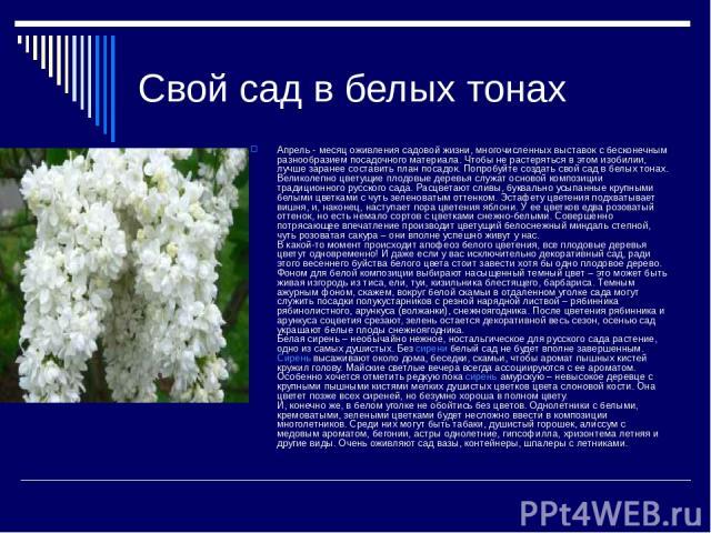 Свой сад в белых тонах Апрель - месяц оживления садовой жизни, многочисленных выставок с бесконечным разнообразием посадочного материала. Чтобы не растеряться в этом изобилии, лучше заранее составить план посадок. Попробуйте создать свой сад в белых…