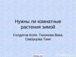 Нужны ли комнатные растения зимой Солдатов Коля, Тихонова Вика, Скворцова Таня 9